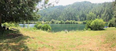 Benewah County Residential Lots & Land For Sale: 448 Cedar Grove Lane