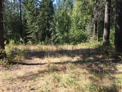 Sandpoint Residential Lots & Land For Sale: 12178 Baldy Mountain Rd