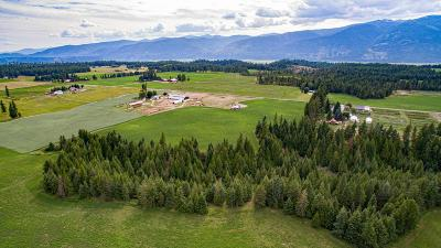 Bonners Ferry Single Family Home For Sale: 2195 Moon Shadow Rd