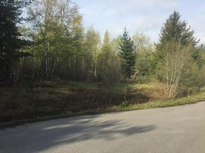 Sandpoint Residential Lots & Land For Sale: Lot 5 Missing Pony Ct