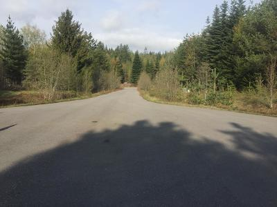 Sandpoint Residential Lots & Land For Sale: Lot 8 Missing Pony Ct