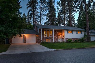 Post Falls Single Family Home For Sale: 4518 E Alpine Dr