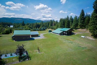 Priest Lake, Priest River Single Family Home For Sale: 487 Fox Creek Spur
