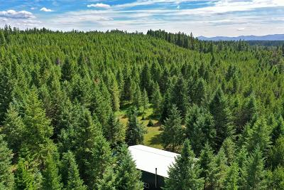 Priest Lake, Priest River Single Family Home For Sale: 5294 Bandy Road