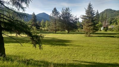 Sandpoint Residential Lots & Land For Sale: Lot 2 882 Lower Pack River Rd