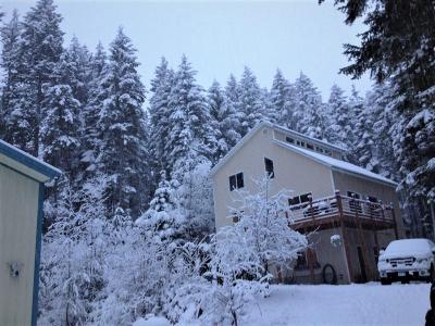 Priest Lake, Priest River Single Family Home For Sale: 60 Old Thama Ferry Rd