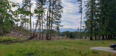 Sandpoint ID Residential Lots & Land For Sale: $275,000