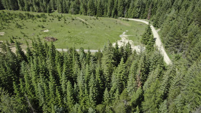 Priest River Residential Lots & Land For Sale: 50 Granite Ridge