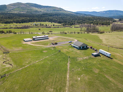St. Maries Farm & Ranch For Sale: 29720 Hwy 6