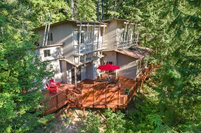 Priest Lake Single Family Home For Sale: 62 Hummingbird Lane