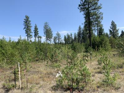 Athol Residential Lots & Land For Sale: Nna Hwy 95