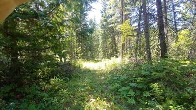 Athol Residential Lots & Land For Sale: NKA N Riffle Road