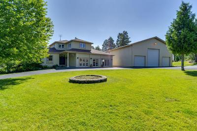 Post Falls Single Family Home For Sale: 16785 W Deer Ridge Dr