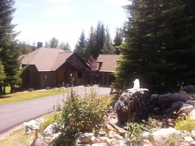 Priest Lake Single Family Home For Sale: 131 Long Dr