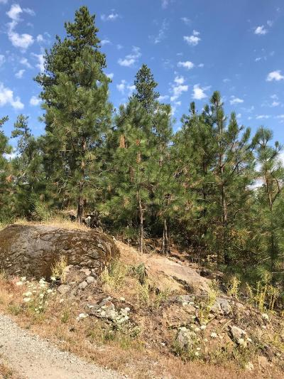Post Falls Residential Lots & Land For Sale: 255 S Lower Crystal Bay Rd