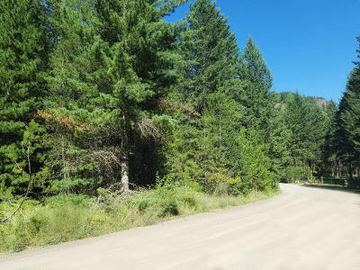 Residential Lots & Land For Sale: 19 Bear Claw Rd