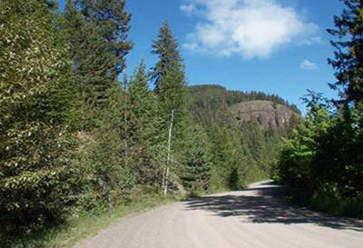 Residential Lots & Land For Sale: 16 Bear Claw Rd