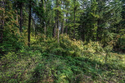 Bayview Residential Lots & Land For Sale: NNA N Terrace Dr