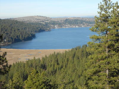 Hauser, Post Falls Residential Lots & Land For Sale: NKA S. Idaho Road 58