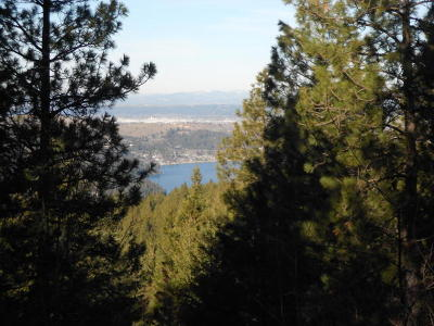 Hauser, Post Falls Residential Lots & Land For Sale: NKA S. Idaho Rd.