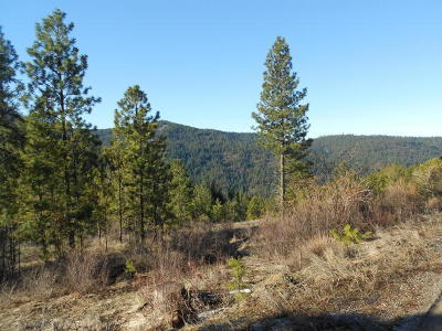 Post Falls Residential Lots & Land For Sale: NKA S. Idaho Road 15