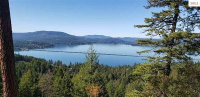 Residential Lots & Land For Sale: NNA Eagle Crest Dr