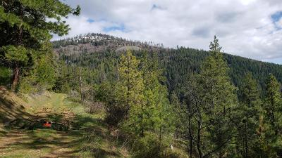 Hauser, Post Falls Residential Lots & Land For Sale: NKA S. Idaho Road 59
