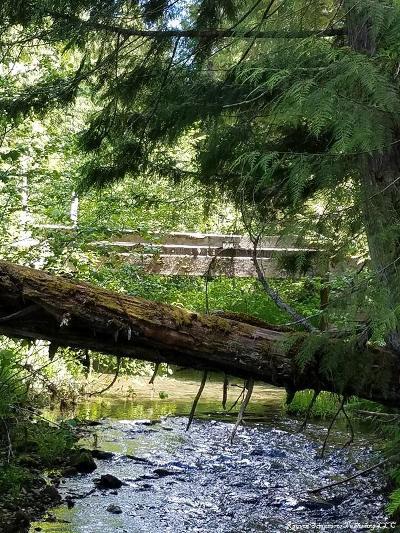Benewah County Residential Lots & Land For Sale: NNA Charli Creek