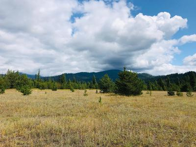Residential Lots & Land For Sale: NNA Eastriver Road