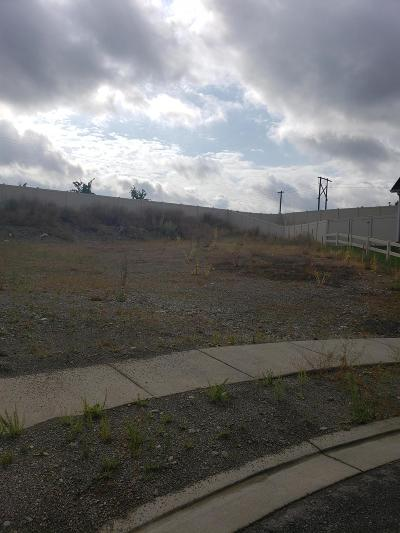 Post Falls Residential Lots & Land For Sale: 3364 Treaty Rock Blvd
