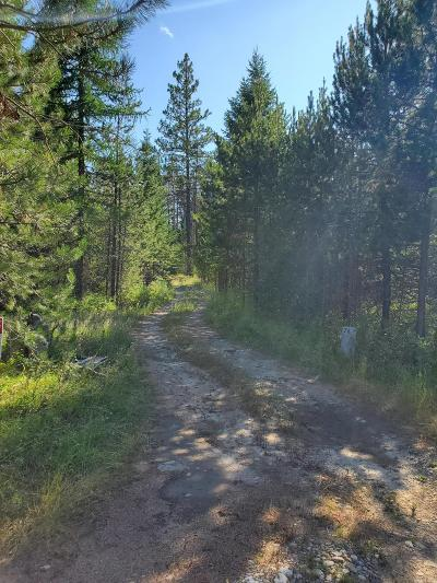 Spirit Lake Residential Lots & Land For Sale: 764 Outback