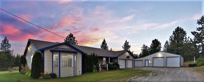 Spirit Lake Single Family Home For Sale: 291 Skyhawk