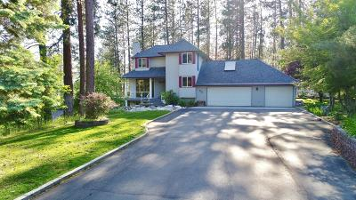 Post Falls Single Family Home For Sale: 520 S Shore Pines Rd