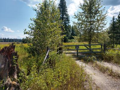 Sandpoint Residential Lots & Land For Sale: 188 Oliver Rd