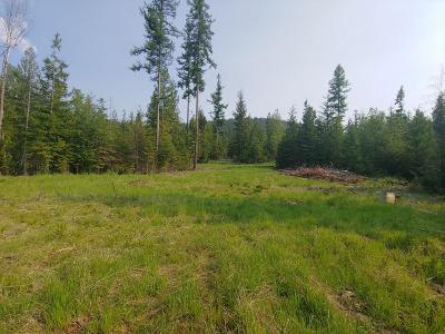Bonners Ferry ID Residential Lots & Land For Sale: $175,000