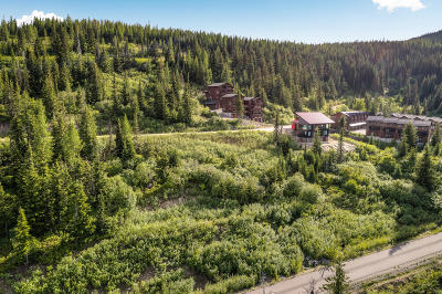 Sandpoint Residential Lots & Land For Sale: NKA Blizzard Drive