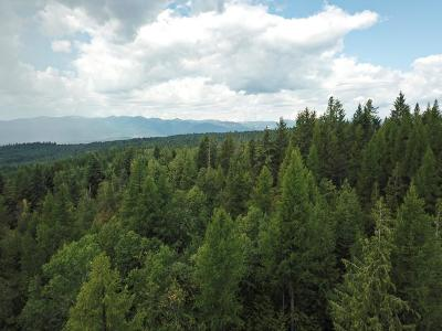 Sandpoint ID Residential Lots & Land For Sale: $129,950