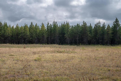 Rathdrum Residential Lots & Land For Sale: Wandering Pines