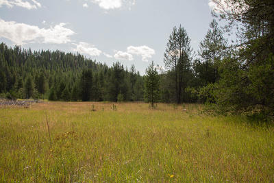 Priest River Residential Lots & Land For Sale: NKA Dubius Creek Rd