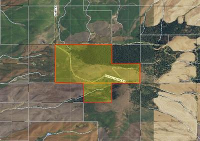 Benewah County Residential Lots & Land For Sale: NKA Crabb Rd