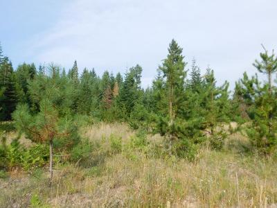 Land for Sale in Clark Fork ID under $200,000 | Clark Fork