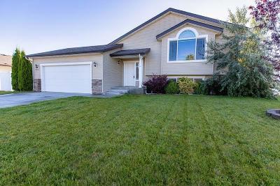 Hayden Single Family Home For Sale: 8374 N Boysenberry Loop