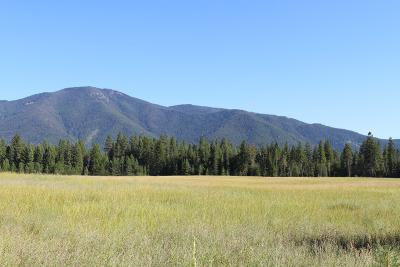 Bonners Ferry Residential Lots & Land For Sale: NNA Coyote Way