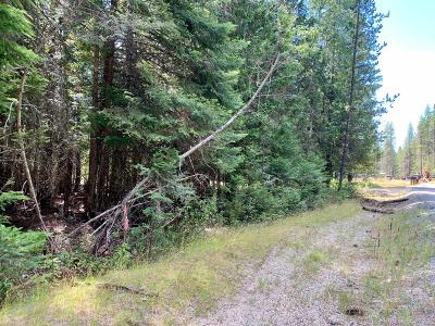 Priest Lake Residential Lots & Land For Sale: NNA Lot 1 Kalispell Bay Rd