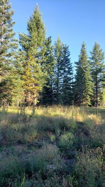 Rathdrum Residential Lots & Land For Sale: Lot 8 Tansy