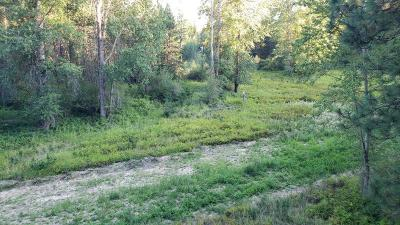 Rathdrum Residential Lots & Land For Sale: Lot 3 Thunder Ridge