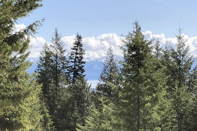 Sandpoint Residential Lots & Land For Sale: 622 Janish Dr