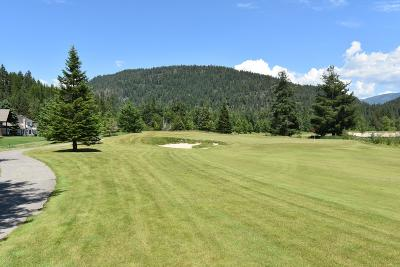 Sandpoint Residential Lots & Land For Sale: NNA Lower Pack River