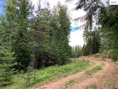 Sandpoint Residential Lots & Land For Sale: Lot 2 2nd Add Forest Knolls