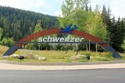 Sandpoint Residential Lots & Land For Sale: 79 Snowplow Rd